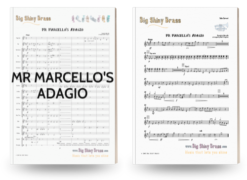 Mr Marcello's Adagio